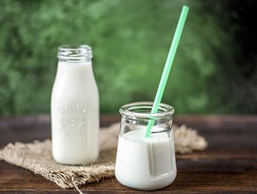 Süt ve Süt Ürünleri Endüstrisi